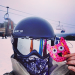 Travelling Owl Project - Mt. Buller