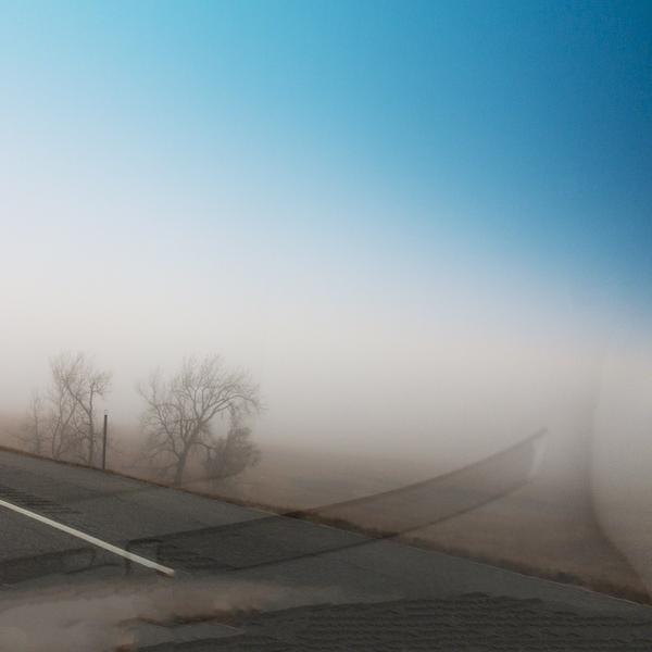 Sentient Road
