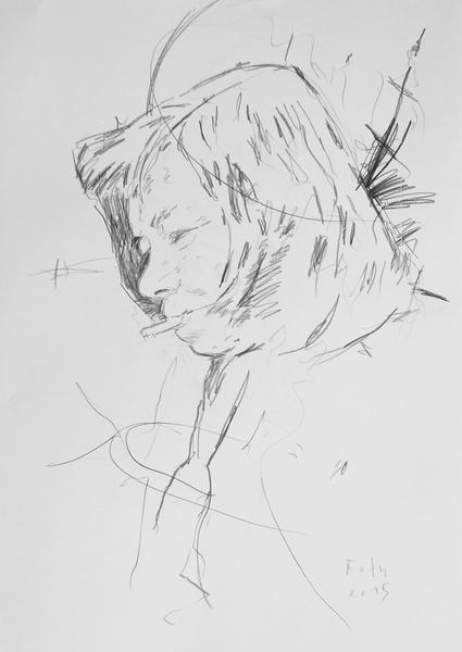 Studie zu Patricia Highsmith