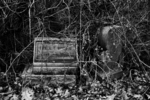 Boneyard- Headstones and Briers
