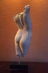 Aphrodite en torse 2