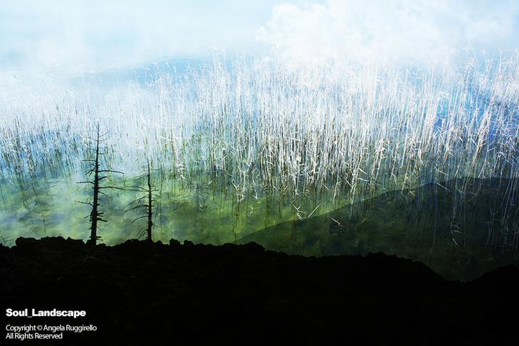 Soul_Landscape_FROG
