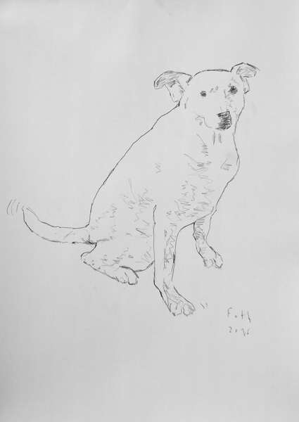 Pablo der Atelierhund III