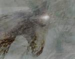 Janne's horse-II