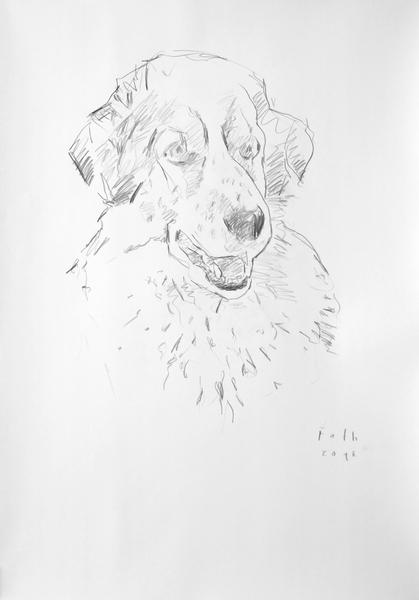 "Hund ""Lucky"" III"