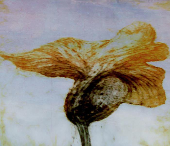 Fleur 69 - IV