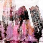 NY_color1