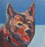"""2016-05-24 12""""Olas dog"""""""
