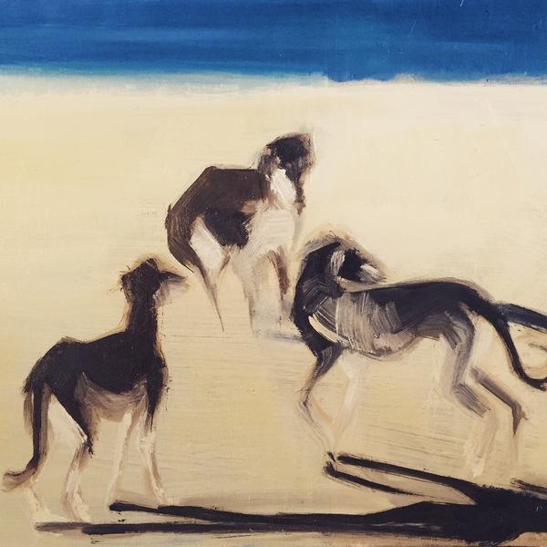 Wind dogs