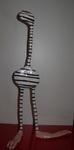 zebra n 2