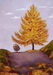 Surprise in Autumn