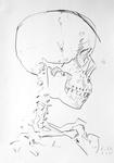 Tod, Profil