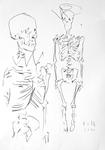 Skelette auf der Wiesenstraße