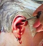Ear Detail