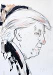Studie zu Donald Trump II