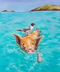 Swimmimg Piggy