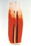 OrangeSchwarz 1