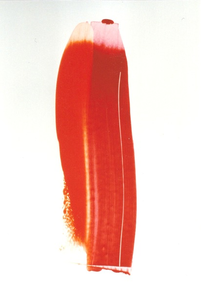 Rot 1
