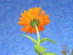 Impression of a flower