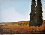 Cypresses-2016-30X40cm-Ts