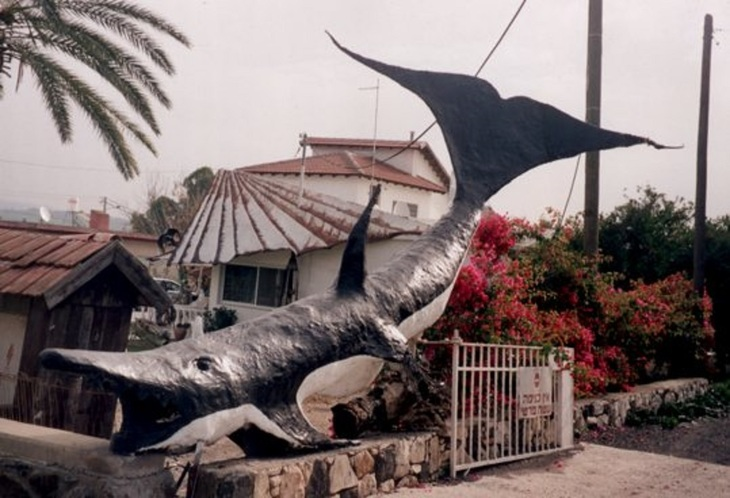The Whale by Shimon Drory
