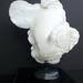 Plastic Shape by Shimon Drory