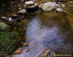 Rio Sabaneta, Choroni