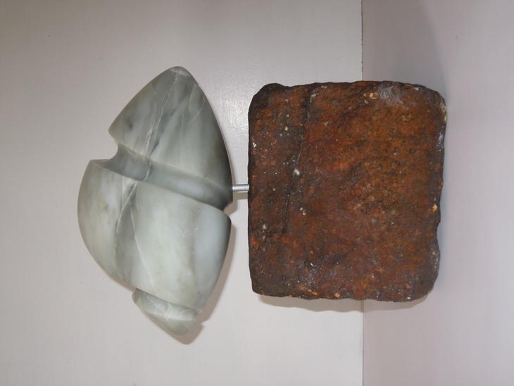 Muschelforlm