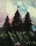 Tannnen im Nordschwarzwald