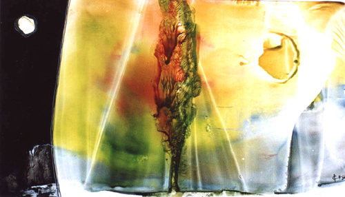 ambivalenz-lebensbaum