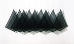 Dana Kane black kites