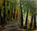 Ein Gefühl für Wald oder Hambacher Forst
