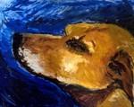 dead dog willem