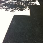 Shadow 29