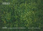 Gras, Hamburger Kunsthalle, 06.12.2017 - 05.05.2018