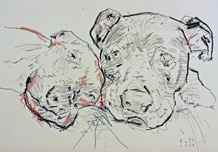 Zwei Hunde, verzagt