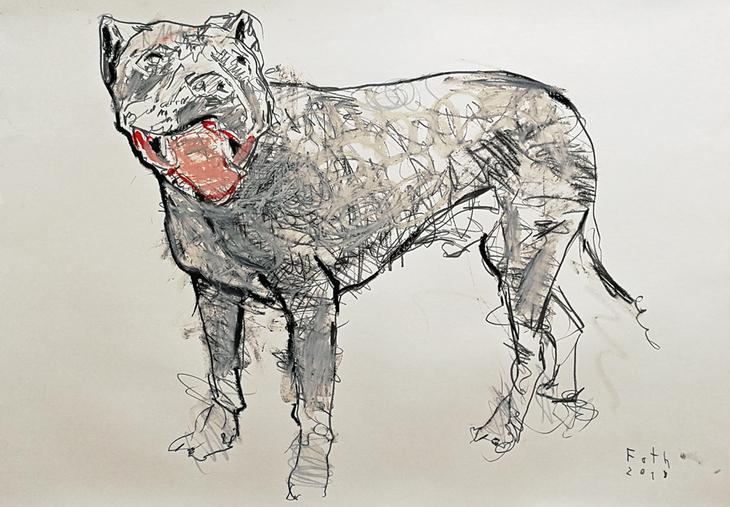 Hund, zutraulich