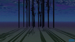 """tall trees long shadows"""