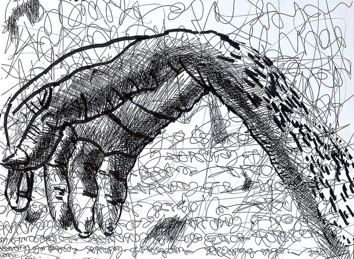 hand drawings by raphael perez hands drawings ink on paper