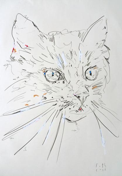 Katze, Oktober