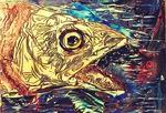 Fish C1