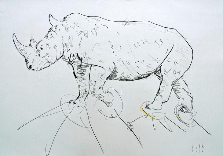 Rhinozeros I