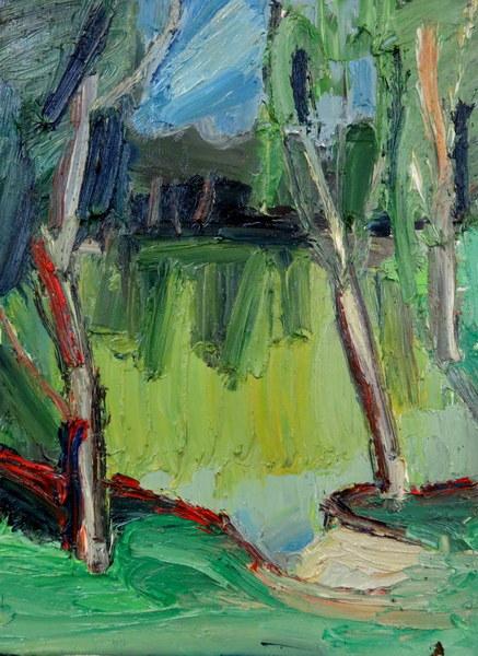Birken am Teich