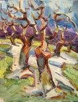 Bäume  mit  Restschnee