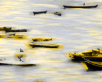 dboats-2 | bombay boats