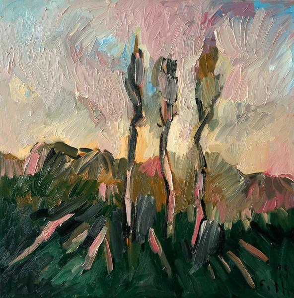 Bäume, Augustlicht