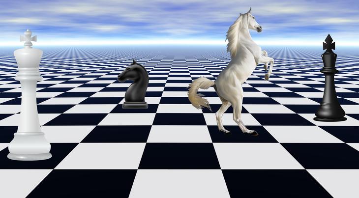 chess scape (5)