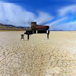 desert (7)