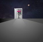 Wall door (3s