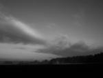 Birken Horizont